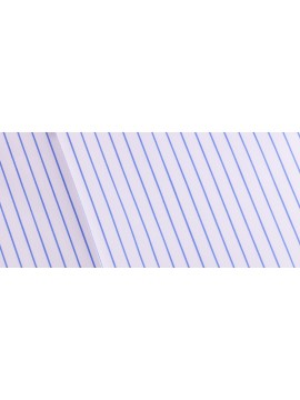 Signature Blue Thin Striped Cotton Shirt